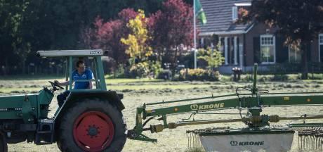 Volop bedrijvigheid in de zonnige wei: 'Gras goed gegroeid na natte weken'