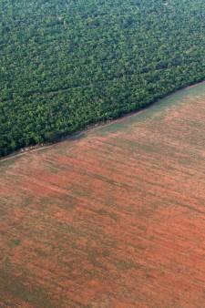 Cinq choses à savoir sur l'Amazonie