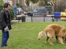 Dénoncer les crottes de chiens non ramassées peut rapporter gros