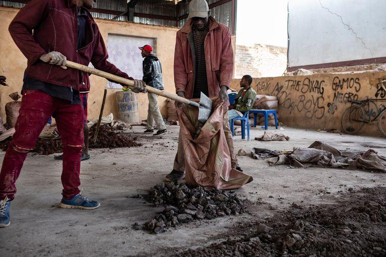 Arbeiders van de Congolese Kasulo-mijn vullen zakken met kobalt, bovengehaald door collega's. Beeld Corbis via Getty Images