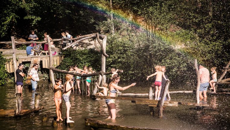 Kinderen trotseren een klimparcours in de wateren van natuurdomein Massembre. Beeld Bas Bogaerts