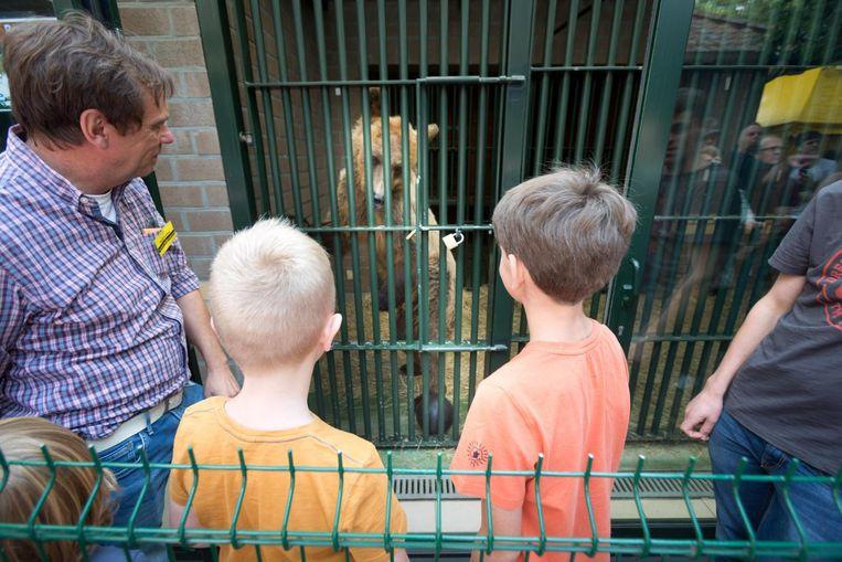 Vooral de bruine beren konden op flink wat belangstelling rekenen.