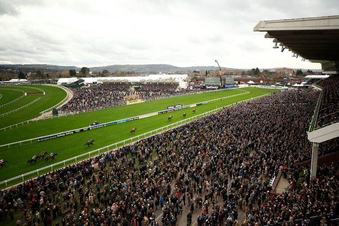 Op woensdagmiddag 11 maart loopt de Grand Stand vol in Cheltenham voor de paardenrace. In Engeland is er nu veel kritiek dat dit grote sportevenement ondanks de dreiging van het coronavirus door kon gaan.
