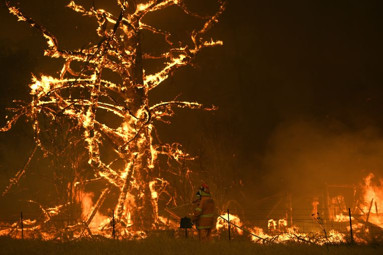 Brandweermannen trachten de vlammen te bestrijden in Bilpin, New South Wales. Beeld AP