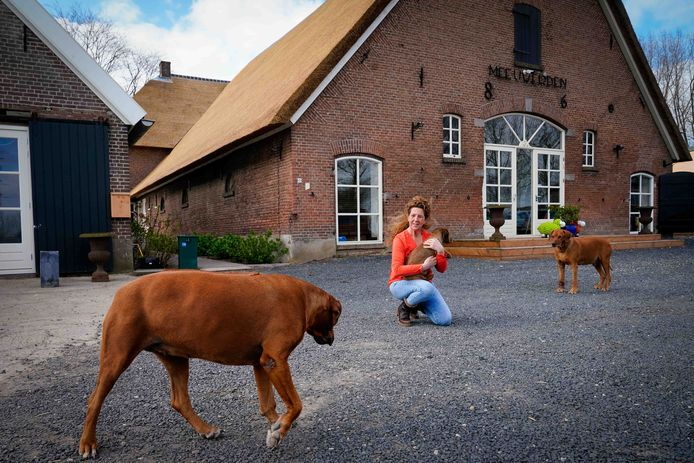 Sabine van Meurs runt namens Mesazorg een zorgboerderij in het buitengebied