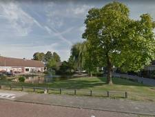 Vijverhof in Putten krijgt nieuw groen jasje en een ovale vijver