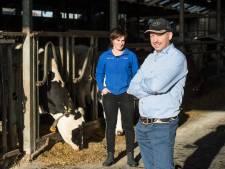 Een koud kunstje: zo voorkomt Erik van Oosterhout dat zijn koeien gestolen worden
