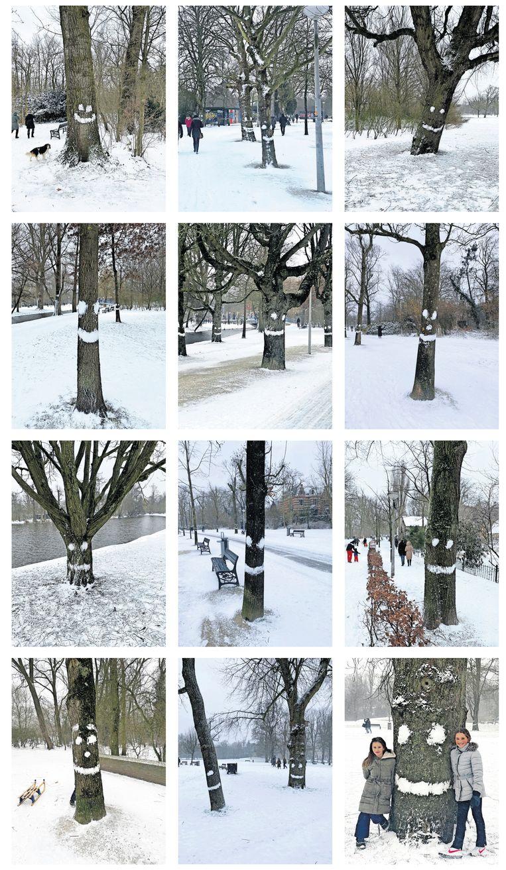 Verschillende bomen in het Vondelpark lachen sinds dit weekend wandelende en sleeënde voorbijgangers toe. Jonathan Coutinho legde de vrolijke kunstwerken vast. Beeld Jonathan Coutinho