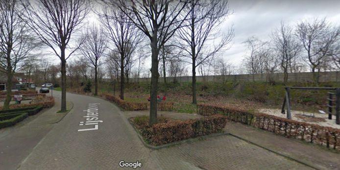 De geluidswal bij de wijk Doelakkers, hier te zien vanuit de Lijsterboog.