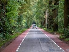 Bomenstichting noemt Raalte nalatig in aanpak Schoonhetenseweg: 'Schade aan bomen enorm groot'