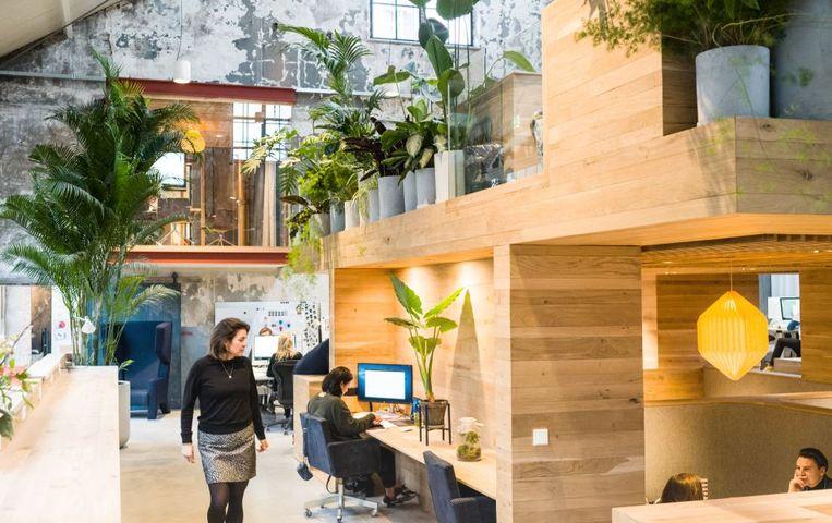 Het Vakwerkhuis in Delft, dat Veenstra met zijn compagnons verbouwde en waarin ze naast een eigen kantoor werkplekken aanbieden aan jonge bedrijven. Beeld Vakwerk Architecten