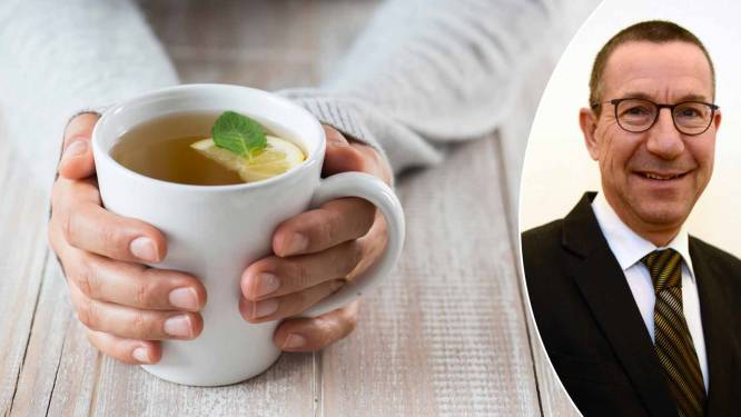 """Experts waarschuwen voor groene thee: """"Bij iets hogere doseringen ontstaan nadelige effecten die niemand wil"""""""