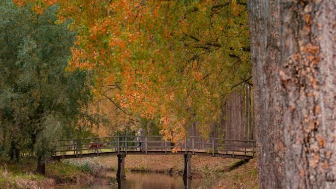 Wat een mooie herfstkleuren!