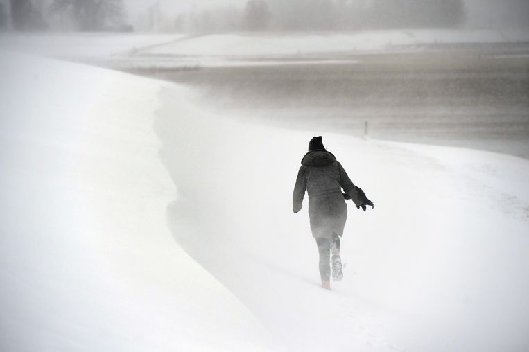 Een sneeuwstorm trok zondag over Nederland.  Beeld Marcel van den Bergh / de Volkskrant