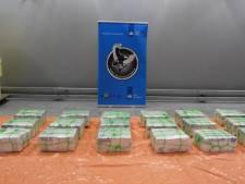 Vondst in Rotterdamse haven: lading sportschoenen uit Dominicaanse Republiek zit vol met 600 kilo coke