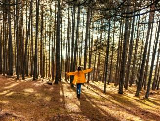 Leven in een schone omgeving erkend als mensenrecht