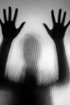Geen zeven, maar vier jaar cel voor agressieve Pool (36) die 72-jarige vrouw aanrandde in Holtens vakantiehuis