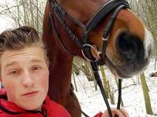 Familie verdenkt gehaaide oplichter van stelen oma's paard Belle Amie