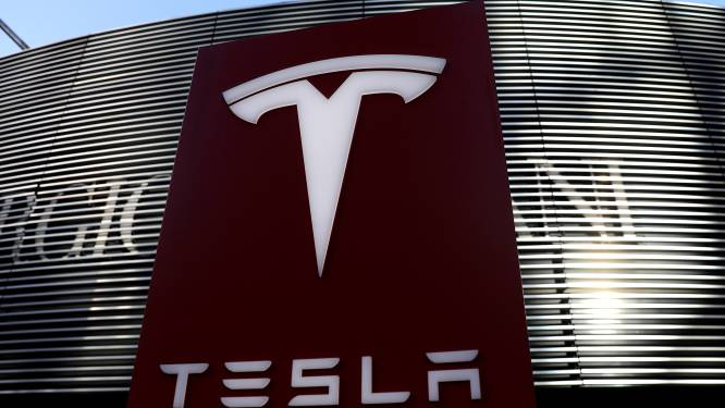 Tesla misnoegd door aanslepende bouwaanvraag voor fabriek in Duitsland
