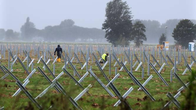 Meer dan 30.000 zonnepanelen in Echteld: 'Hopelijk begin december klaar'