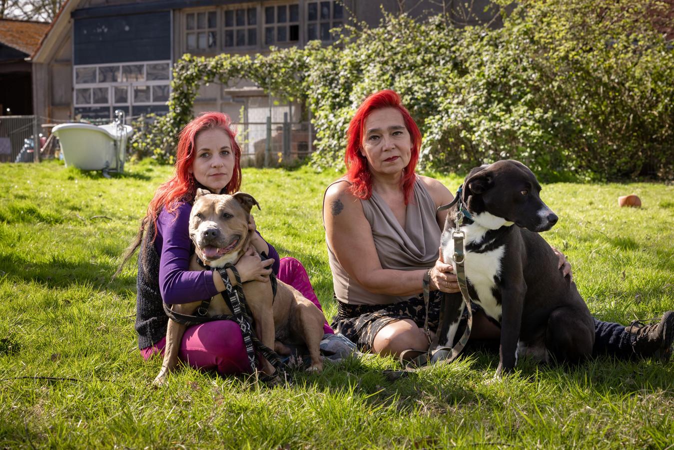 Chelsey van Minderhout (l) en Aris van Eck eind april met twee van de honden waarvoor ze opvang zochten.