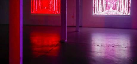 Zijtakje van Glow in het TAC in Eindhoven