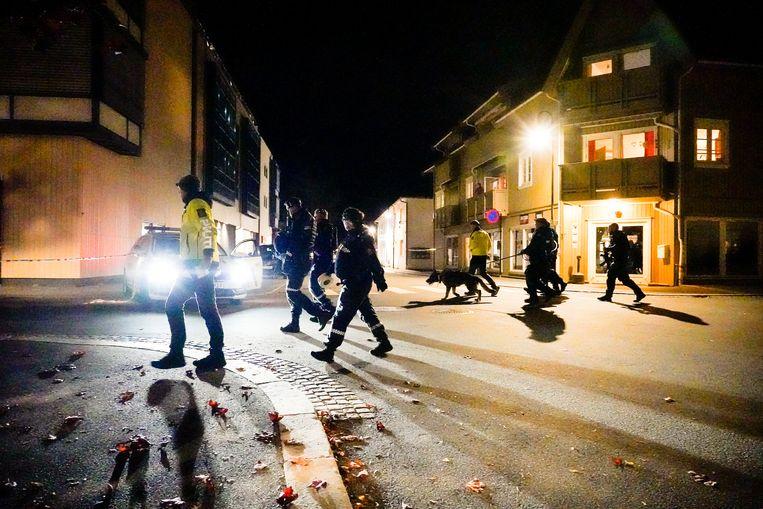 De politie in Kongsberg op zoek naar sporen. Beeld AP