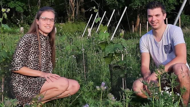 """Seppe (29) en Silke (24) krijgen geen toestemming voor zomerse wijnbar aan rand van Muziekbos: """"Geen horecazaken in agrarisch gebied"""""""