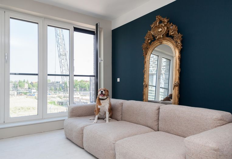 De woonkamer van journalist Elleke van Duin, met Haags Blauw  op de muur.  Beeld Nina Schollaardt