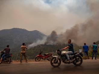 Turkse brandweer heeft handen vol met blussen laatste natuurbranden, elektriciteitscentrale gered