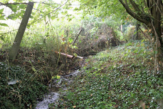 Regenwater mag niet zomaar geloosd worden, maar kan beter in de grond infiltreren.