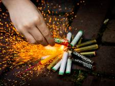 Boswachter wil geen vuurwerk in Biesbosch