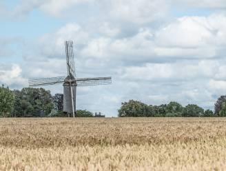 Van mijnwerkers in Brakel tot molenaars in Kruisem: dit zijn de leukste tips voor Erfgoeddag in de Vlaamse Ardennen