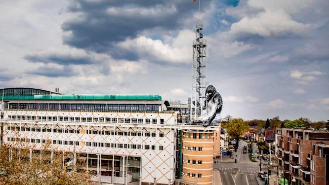 'Apeldoornse King Kong' blaast door storm vroegtijdig de aftocht