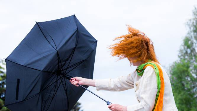 Onweer met intense neerslag en rukwinden op komst: vanavond code oranje in heel het land