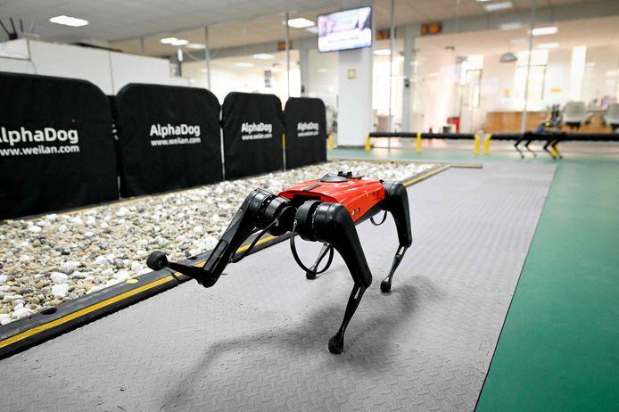 Un robot quadrupède AlphaDog dans un atelier de la Weilan Intelligent Technology Corporation à Nanjing, dans la province chinoise du Jiangsu.