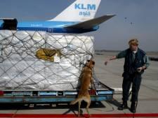 'Controle op wapendoorvoer via luchtvracht Schiphol rammelt'