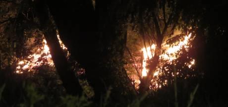 Flink stuk veld loopt schade op door brand in Tiel