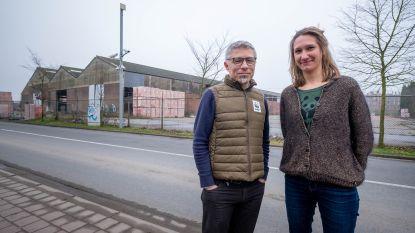 'Ottercorridor' in Terhagen moet dieren meer ruimte en overlevingskansen geven