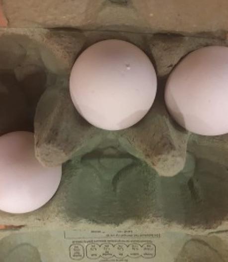 Een doosje eieren en boeken van Rudolf Steiner: het mysterie van de zwaargewonde fietser in Driebergen
