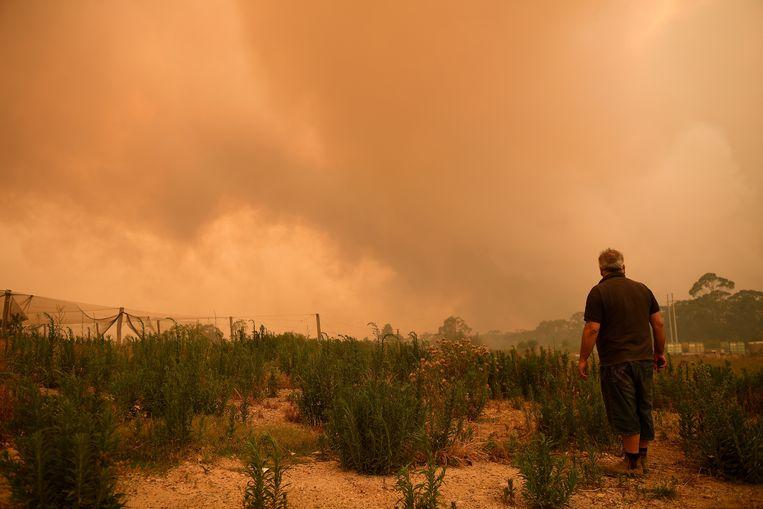 Een bewoner kijkt toe hoe het vuur zich verspreid in Bilpin, in New South Wales. Beeld EPA