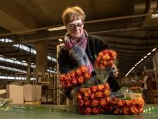 Valentijn op de veiling: een miljoen rozen onder de hamer