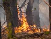 """Pneumoloog over gevolgen bosbrand op je gezondheid: """"Elke dag blootgesteld worden aan rook van houtkachel is pak ongezonder"""""""