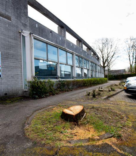 Gemoederen rond illegale bomenkap in Ugchelen laaien weer op: 'Ik ben hier heel boos over'