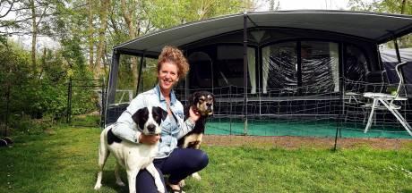 Op deze camping in Oud Gastel zijn kinderen niet welkom: 'Blij met de rust'