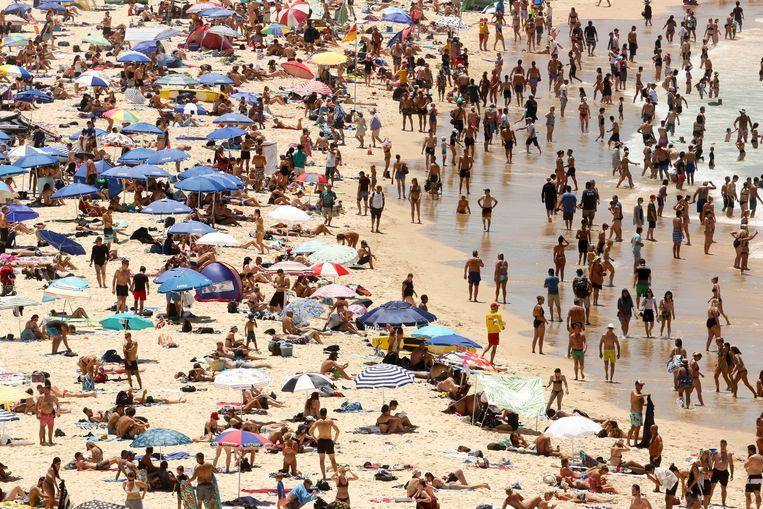 Een januaridag op Bonda Beach, waar de temperaturen klimmen tot boven de 40 graden.