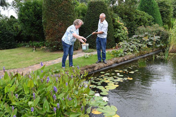 OUD GASTEL.  Jan Stads / Pix4Profs Rubriek Buitenkijken, foto's van de tuin van Frans en Rina van der Graaf