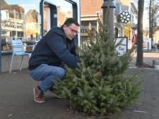 Kerstbomen zijn terug in Oost-Souburg