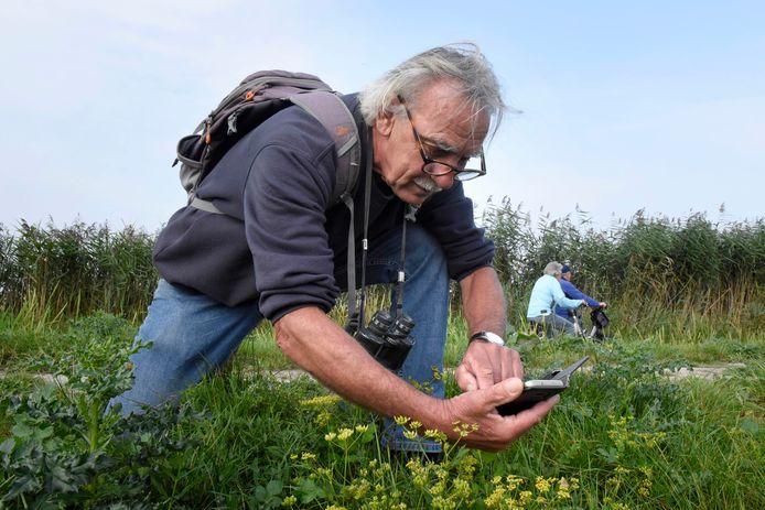 Sluipwesp-ontdekker Kees Janmaat is verslingerd aan de app Obsidentify.