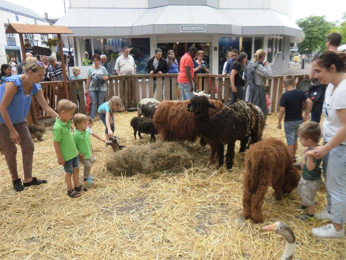 Een deel van het centrum van Oss is zaterdag een kinderboerderij